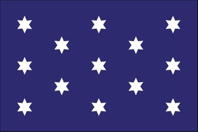 Washington's Commander in Chief Flag - 3' x 5' - Nylon