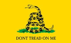 Gadsden Historical Flag - 5' x 8' - Nylon