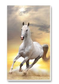Horses Score Pads Playing Cards Accessory