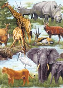 Animal Kingdom 60 Piece Jigsaw Puzzle