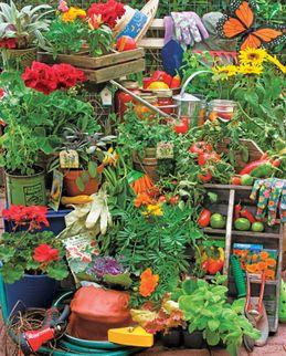 Garden Delights 1000 Piece Puzzle