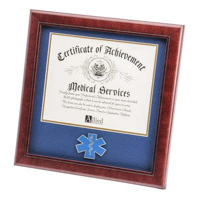 EMS Medallion 8-Inch by 10-Inch Certificate Frame