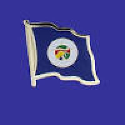 Minnesota Lapel Pin - Single