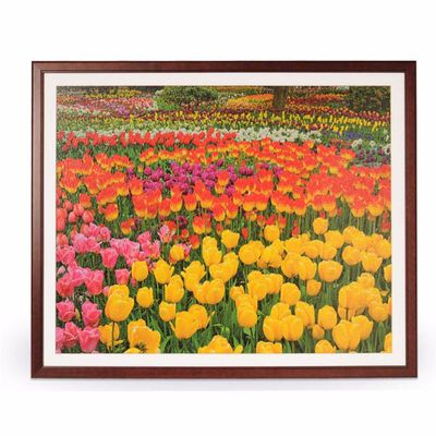 "1500 Piece Jigsaw Puzzle Wooden Frame 28.75"" x 36"""
