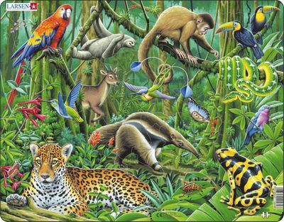 South American Rainforest 70 Piece Children's Jigsaw Puzzle