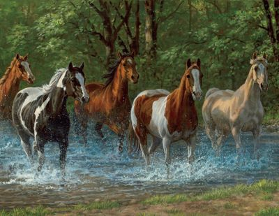 Summer Creek 500 Piece Jigsaw Puzzle