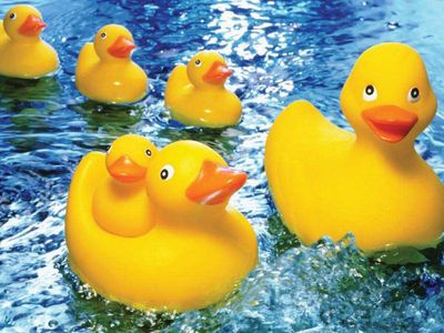 Rubber Duckies 60 Piece Jigsaw Puzzle