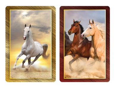 Horses Jumbo Print Index Playing Cards