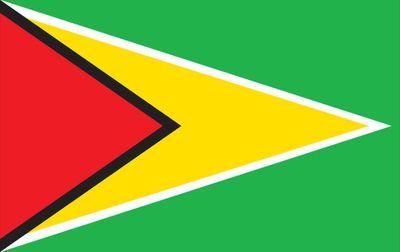 Guyana World Flag