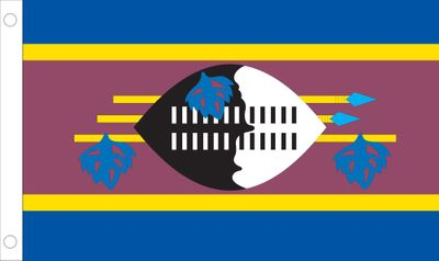 Swaziland World Flag